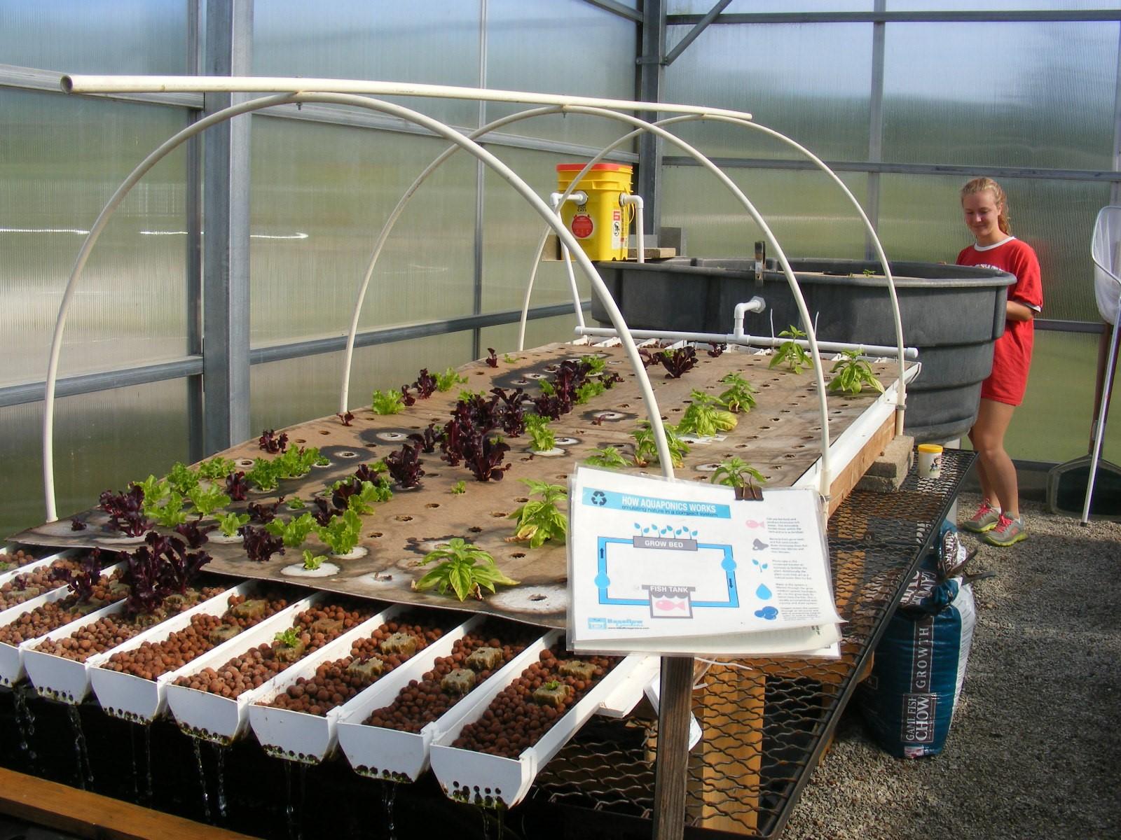 GHS Garden & Greenhouse